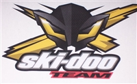 "Skidoo X team Bee 6.5""x4"" Decal"