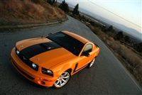"Orange Mustang w/ Black 16.5"" Hood Stripe"