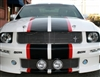 white mustang w/ Red & Black 2 Color Dual Stripe Kit