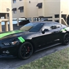 "Black Mustang w/ Green 3"" Hash Mark Stripes"