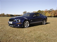 Blue Mustang w/ White Hash Mark Stripes