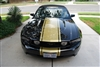 "Black Mustang w/ Gold 20"" Mustang Rally Stripe graphics set"