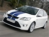 "White Focus w/ Blue 8"" rally Stripes Fit all Body St"