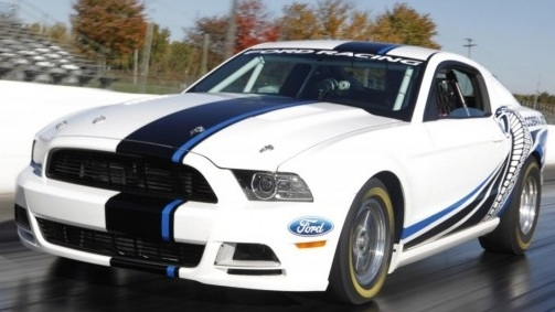 Mustang Fat Cobra Jet Style 2 Color Offset Rally Stripe