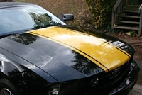 "Black Mustang w/ Yellow 20"" Hood Rally Stripe"