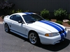 "White Mustang w/ Blue 9"" Rally Stripes"