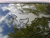 Mustang Pony Rear window DECAL