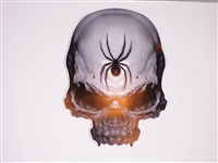 "6""X8"" Black Widow Skull Decal"
