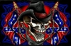 Full Color Skull Confederate Rebel Flag Wall Trailer Tailgate RV graphic Mural decal