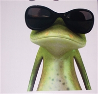 "Sun Glass's Frog 7"" x 9.5"" Decal"