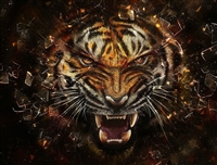 TIGER #5 Wall RV/Wall Decal