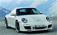 "White Porsche w/ Light Gray 6"" Rally Stripe Set"