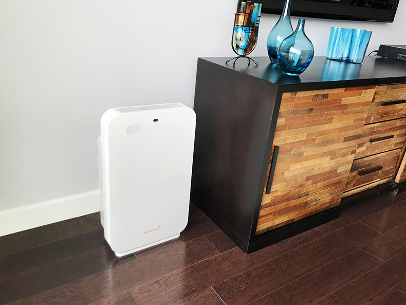 ov200 air purifier family room