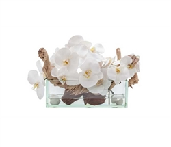 Modern Floral Arrangement Glass and Stone White Orchids 12""