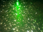 "HYDRA GLOW HGDDLG  LED- ""BOTTOM""-UNDERWATER  LIGHT 120 VOLT GREEN"