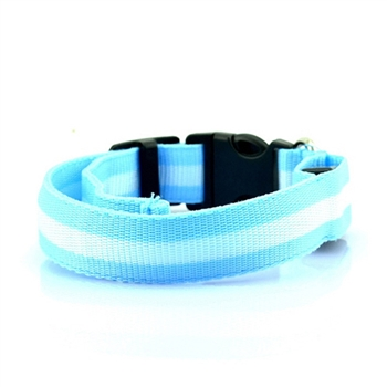 led collar blue