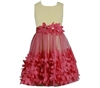 BONNIE JEAN NEW SOLID BODICE / CORAL FLOWER APPLIQUE BOTTON GIRLS DRESS 4-6x