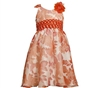 BONNIE JEAN BURNOUT ORANGE AND WHITE FLORAL DRESS
