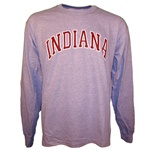LONGSLEEVE Grey Arched INDIANA T-Shirt