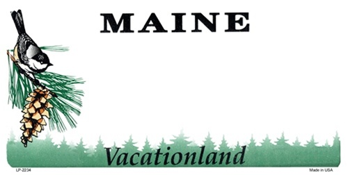 Maine Blank License Plate