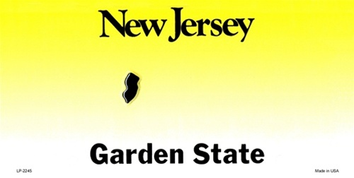 New Jersey Blank License Plate