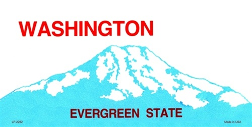 Washington Blank License Plate
