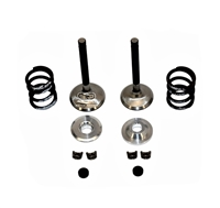 Valve & Spring Package, Stainless Steel - GX390