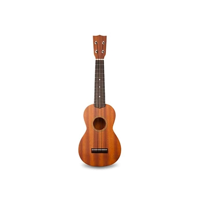 Kids Beginner Ukulele