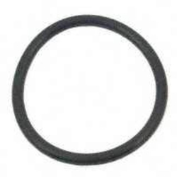Chapin 1-2541 Compression Pump Gasket