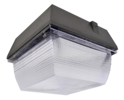 G2 LED Canopy Light , 61W, 5000K, 6900 lm,