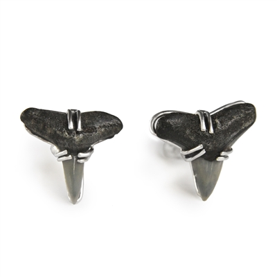 Fossil Shark Teeth Cufflinks