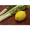 Deluxe Israeli Lulav and Etrog Set - Rabbi Certified