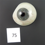 Antique Glass Eye #75