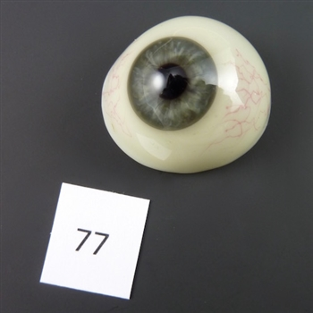 Antique Glass Eye #77