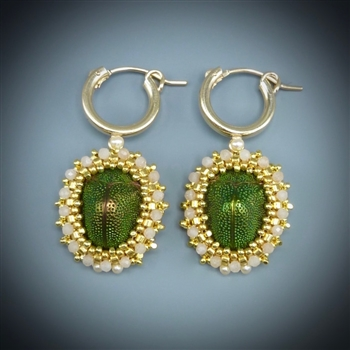 Scarab Beetle Earrings