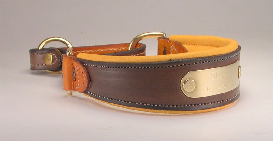 Custom Leather Martingale Dog Collars