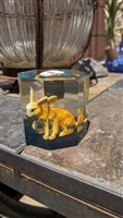 Lucite hexagonal paperweight with Rabbit inside