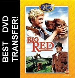 Big Red DVD 1962 Walter Pidgeon Disney Movie