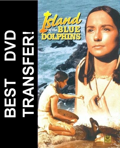 essays on island of the blue dolphins