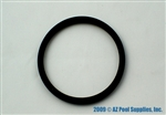 A&A Manufacturing Gamma III Cleaning Head O-ring # 548308