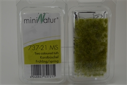 2/4mm Spring Karst Tufts  [Micropack]