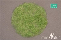 12mm MiniNatur Static Grass [Early Fall]