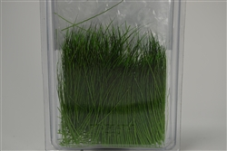 Field Grass [Spring Green]