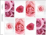 655-r Assorted Pink Roses 8-Up Prayer Card