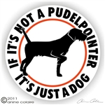 Pudelpointer Decal