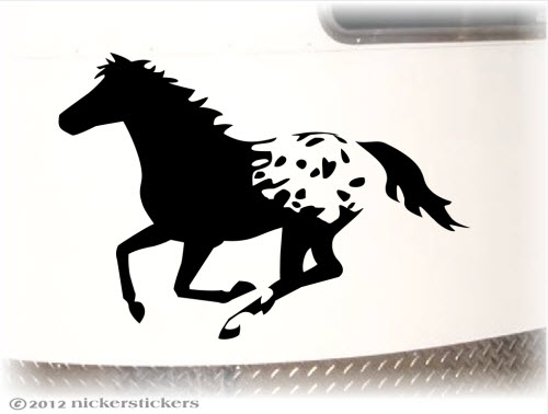 Appaloosa Decals amp Stickers NickerStickers