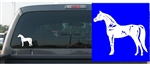 Arabian Horse Decal