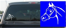 Arabian Horse Head Decal