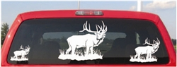 Monarch Elk Decal