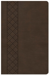 KJV Ultrathin Reference Bible, Value Edition - Brown
